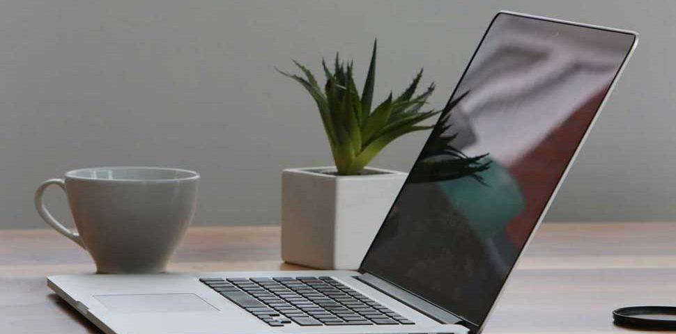 Laptop Smartphone Kaffeetasse Kaktus